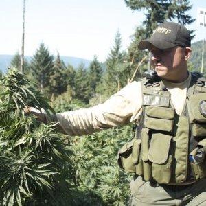 Pot-CopsPot-Cops-Sergeant-Bryan-Quenell-300x300