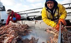 crab-fishing-101-history-250x150