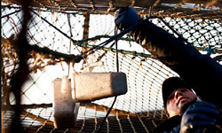 crab-fishing-101-maintenance-250x150