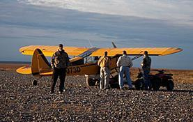 flying-wild-alaska-about-show0-1