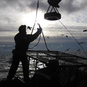 hsw-bering-sea-fisherman0