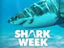 shark-week-11-show-carousel-badge