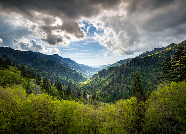 north-america-great-smoky-mountain-625x450