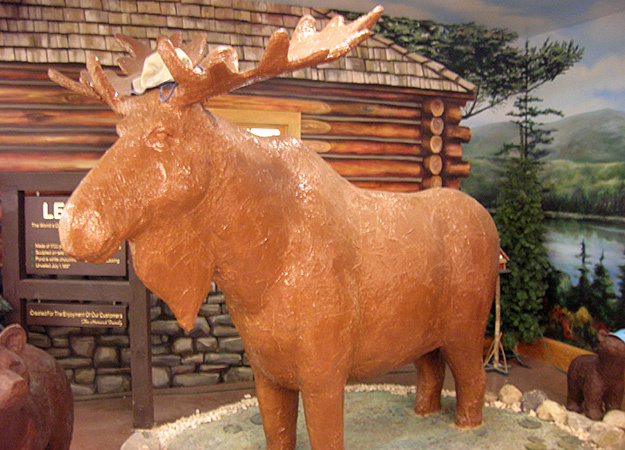 north-america-maine-chocolate-moose-625x450