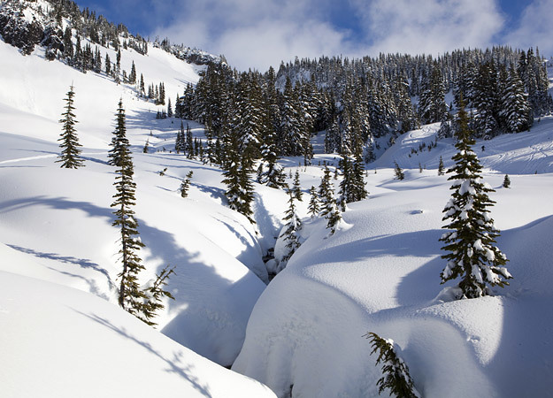 north-america-mount-rainier-625x450