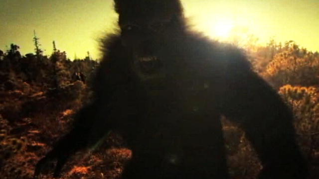 Finding Bigfoot Wallpaper Finding Bigfoot | Animal