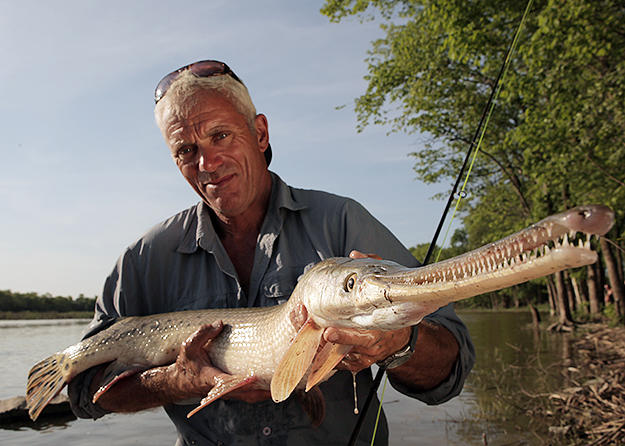 Lamprey pictures river monsters animal planet for Monster fish show
