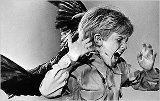 fear-of-birds-ornithophobia0