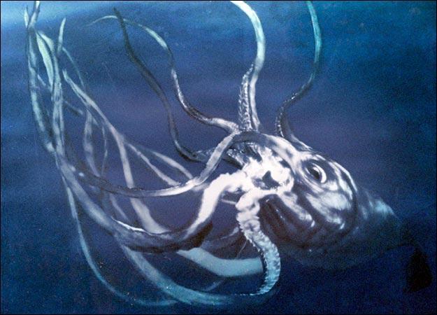 meet-the-creatures-kraken0