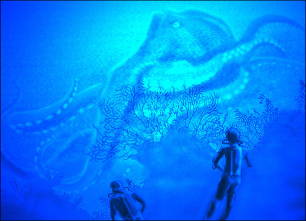 oklahoma-octopus
