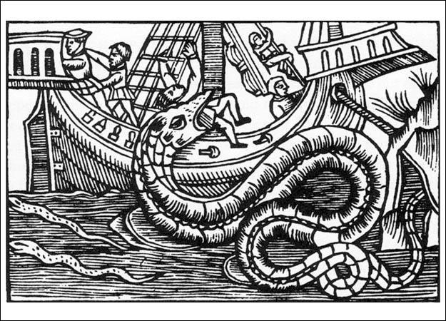 olaus-magnus-sea-serpent