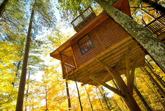 treehouse-article-4-625w