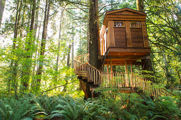 treehouse-article-5-625w
