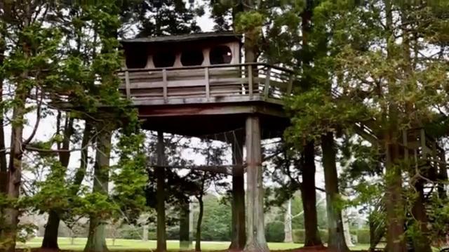 jem-treehouse