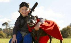 Top 10 Kid-Friendly Small Dogs