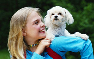 10-kid-friendly-small-dogs1
