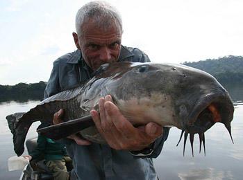 black-piranha-04