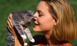 Top 10 Cat Quirks
