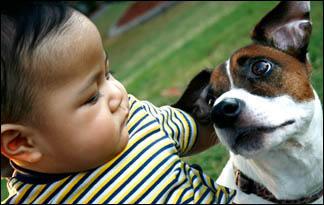 family-pet-baby0