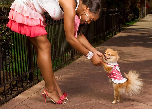 fun-ways-to-exercise-dog-10-625x450