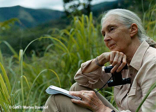 jane-goodall-top-10-birthday-intro
