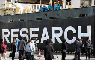 japanese-whalers-japanese-whalers-researching0