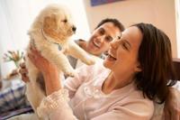 merial-puppy-intro0