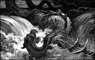 no 7 leviathan animal planet