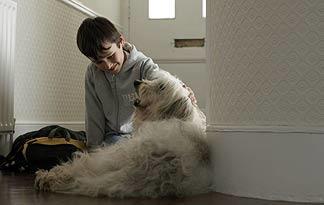 pets-improve-health-05