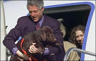 presidential-pups0