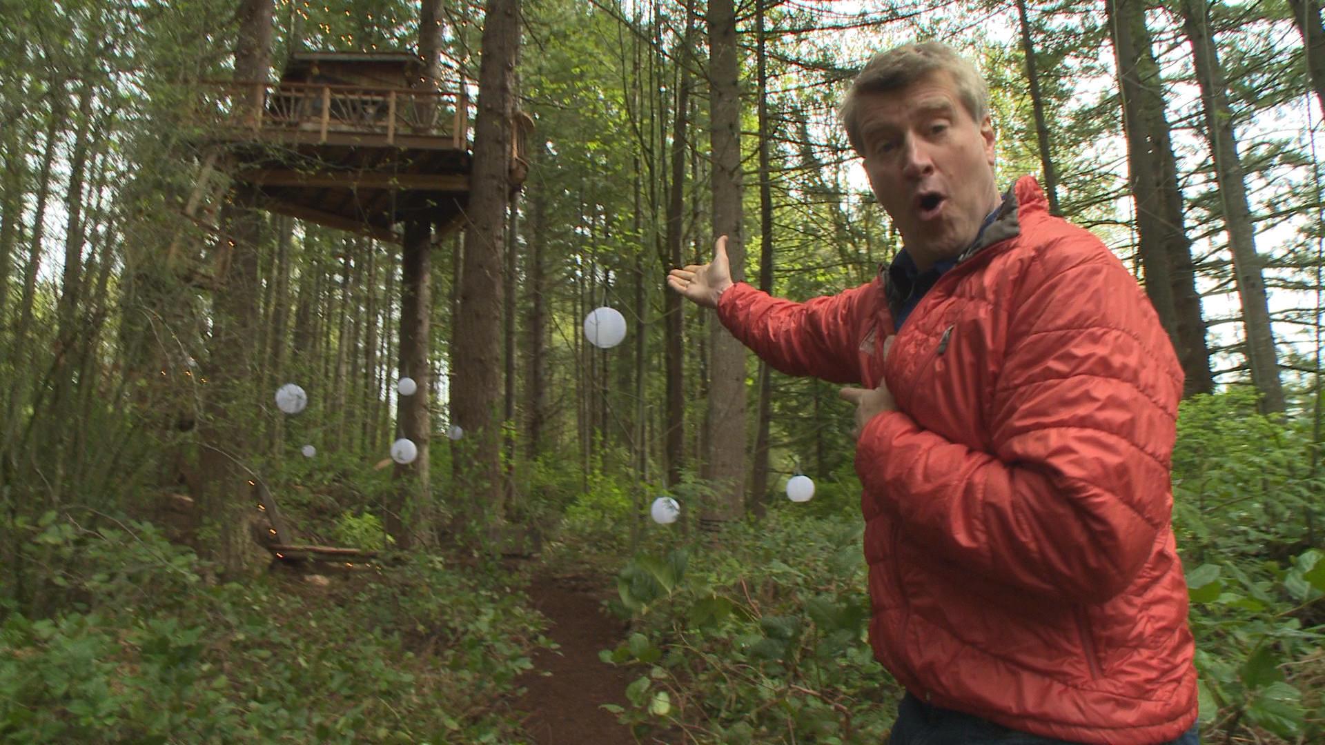 Alex meyer treehouse masters age - Alex Meyer Treehouse Masters Nelson Treehouse Charming Pete Spitalerhof On Decor