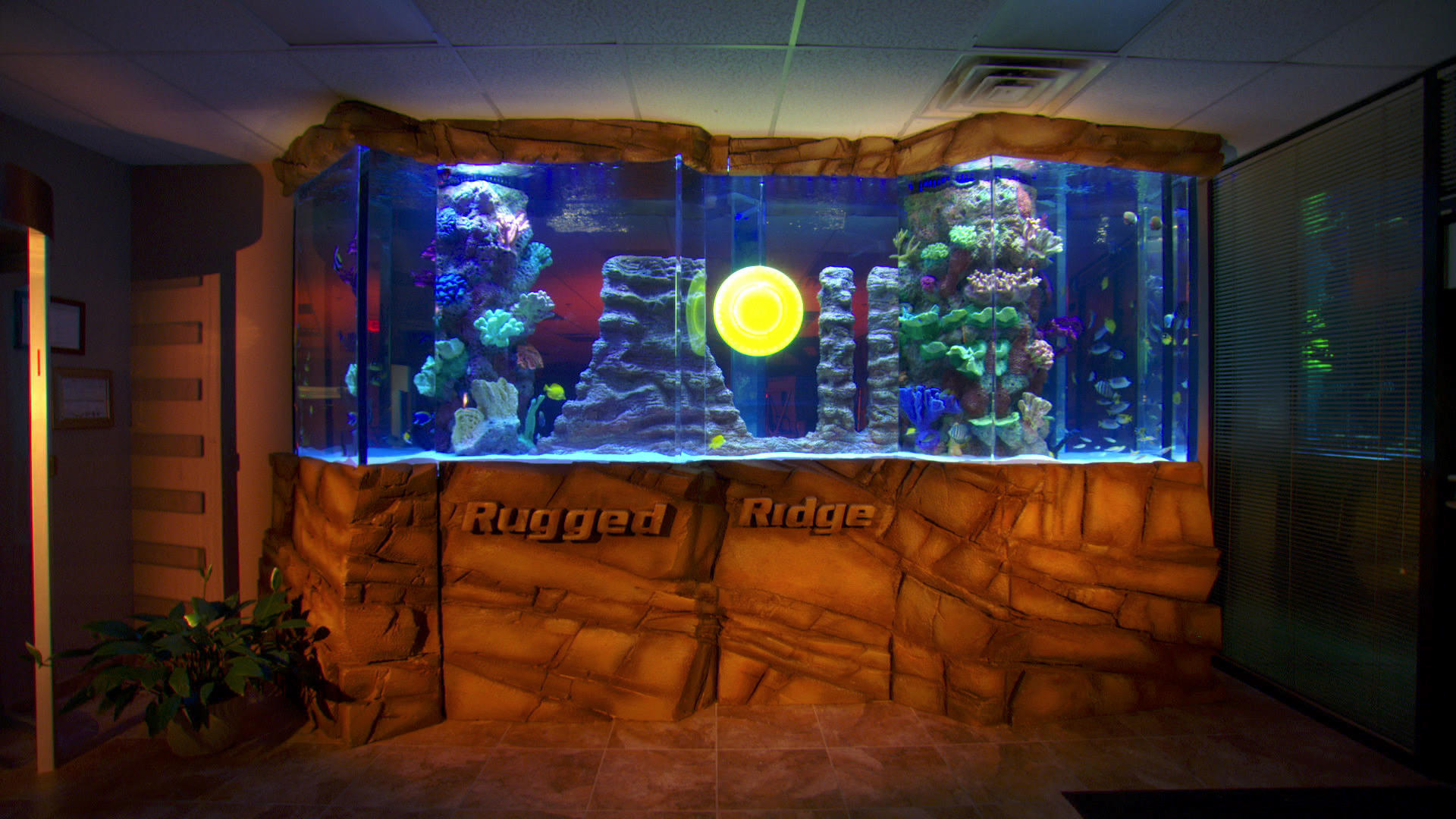 A truly rugged tank tanked animal planet for Fish tank show