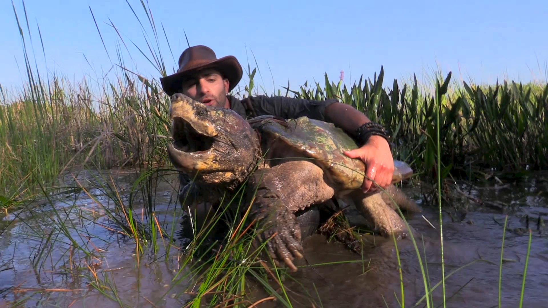 Biggest Turtle You've Ever Seen | Breaking Trail with ...  Biggest Turtle ...