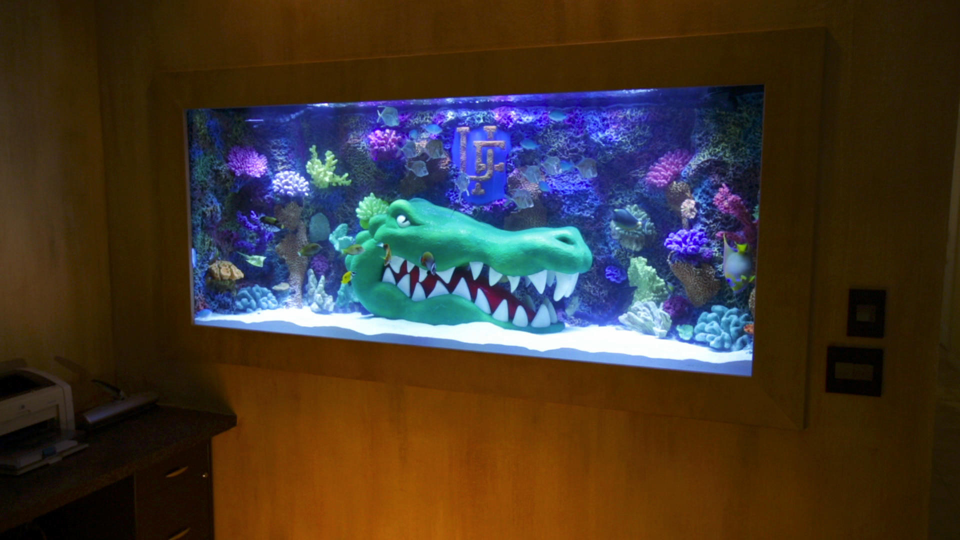 A Great Gator Tank For Titus O Neil Tanked Animal Planet