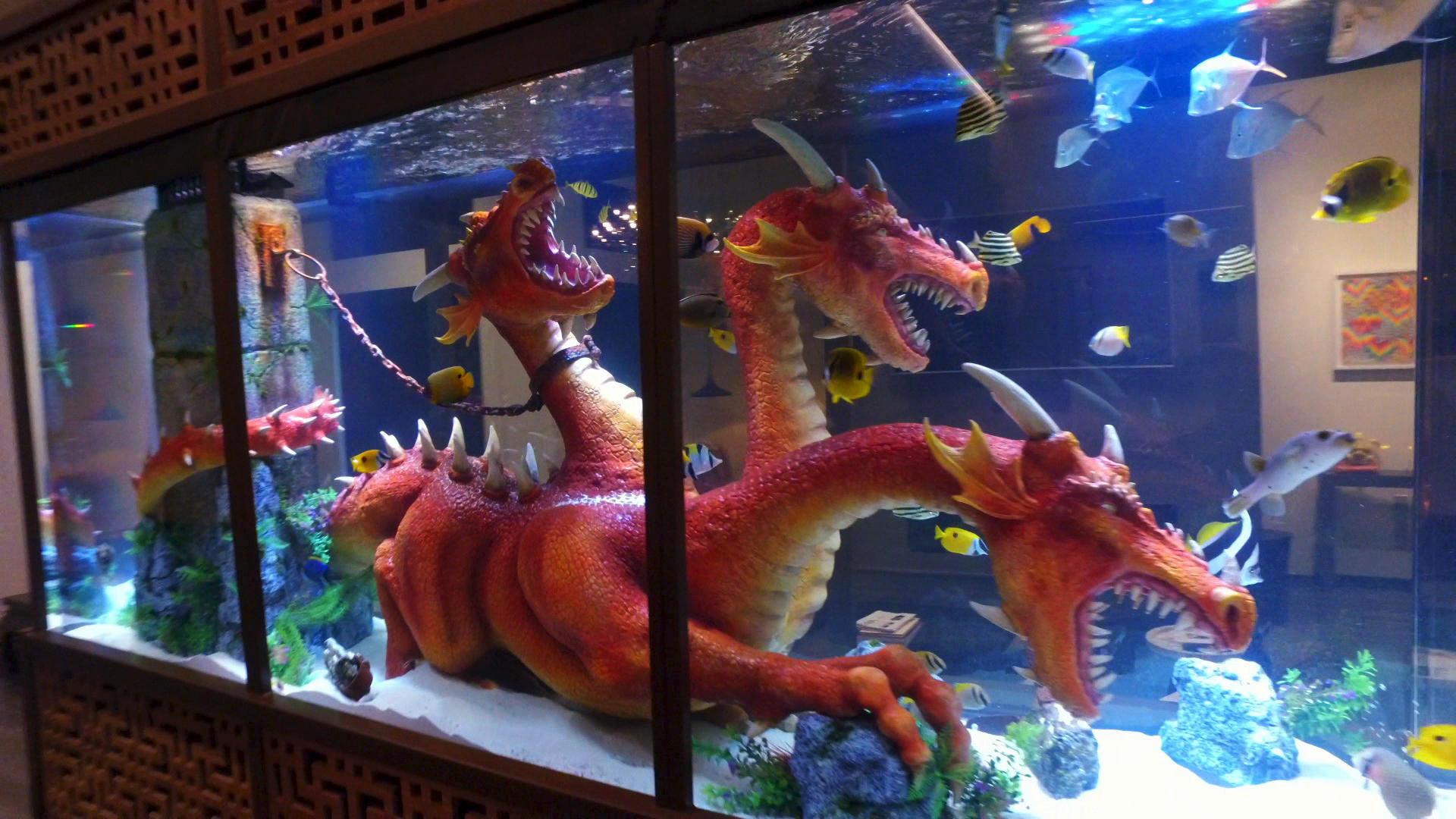 Zombie fish tank youtube - Zombie Fish Tank Youtube