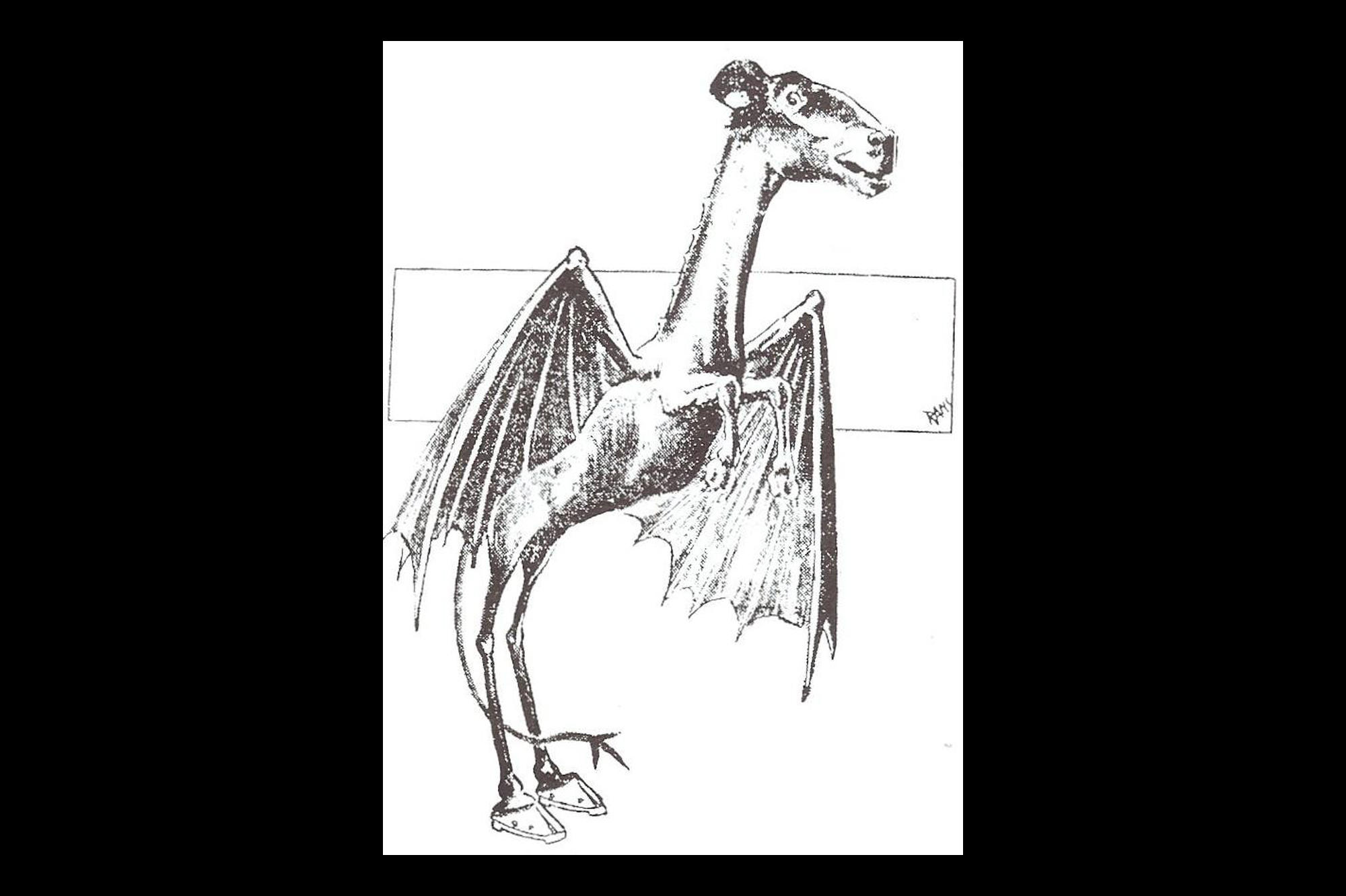 Line Drawing Giraffe : The terrifying jersey devil may just be best thing about