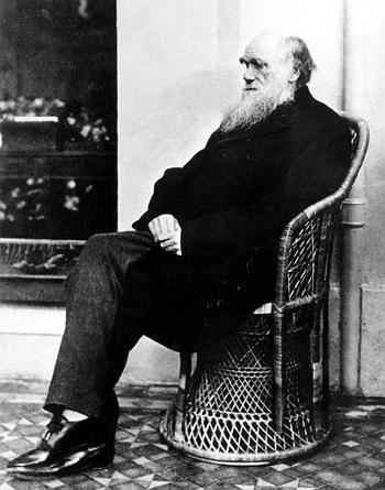 Charles Darwin poses in a wicker chair in 1875. Darwin's insight into inherited characteristics and their impact on survival contributed greatly to genetic thought.