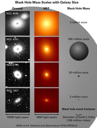This diagram shows different sizes of black holes as compared to our sun. As you can see, a black hole could swallow millions of stars. And in fact, they often do -- see how black holes stifle stars next.