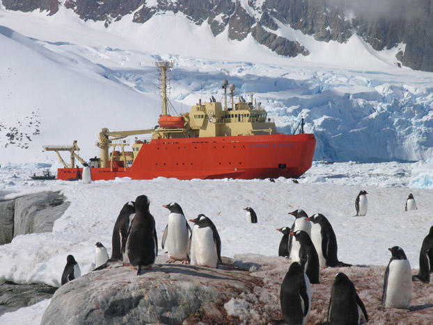 """This red ship is the R/V Laurence M. Gould -- an ice-strengthened research vessel that answers to the U.S. National Science Foundation's Office of Polar Programs. You might think of Antarctica as an unwelcoming and featureless ice-world, tucked away from civilization at the bottom of the globe. You'd be right about unwelcoming -- for humans, at least. For most of the year, even the milder coasts of Antarctica offer bone-shivering temperatures and few natural resources. But """"featureless"""" doesn't capture the true nature of Antarctica, which in reality represents an exciting frozen treasure trove of new science for humankind to explore. Read on to see more of the southernmost continent's most breathtaking natural features and its most intrepid cold-weather critters."""