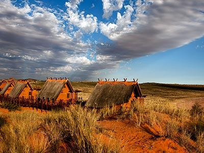Like many deserts, the Kalahari of southern Africa has brutal temperature variations between night and day -- and these are some