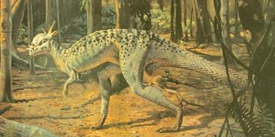 """The spiny-headed dinosaur Stygimoloch is the latest pachycephalosaur to have been discovered. Its name means """"River of Hades devil,"""" and it was found in the United States in Montana and Wyoming. Next up: another Western American dinosaur."""