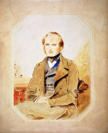 """Charles Darwin, an English naturalist, is widely known as the father of evolution. His groundbreaking book, """"On the Origin of Species,"""" was published in 1859 and contained his theories about different evolutionary theories. Next, see how one human ancestor might have died."""