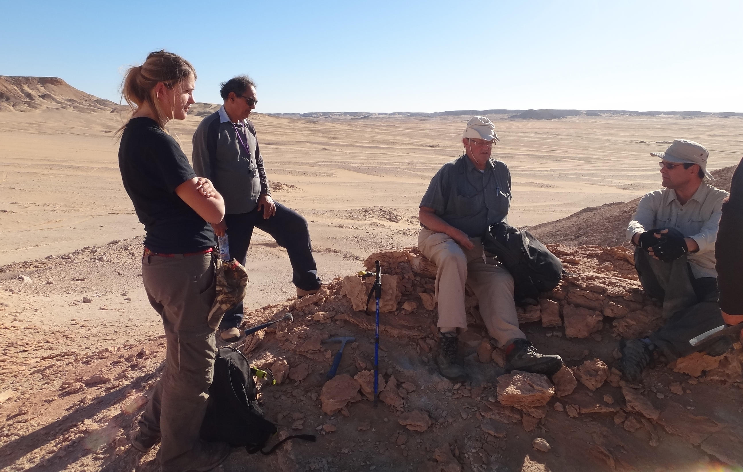 Paleontologists dig for fossils in war-torn Libya.