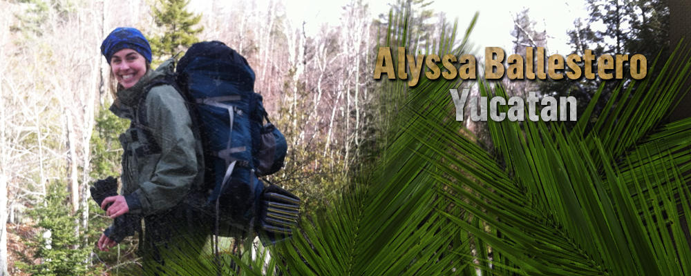 Alyssa Ballestero