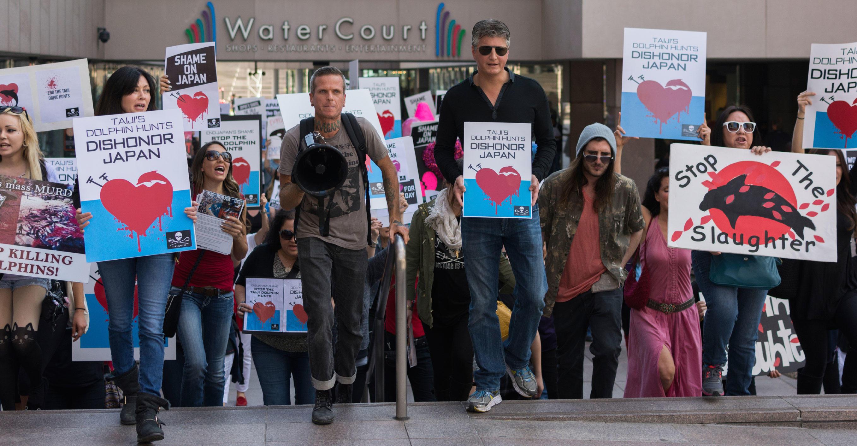 Activists protesting Taiji dolphin drive hunt
