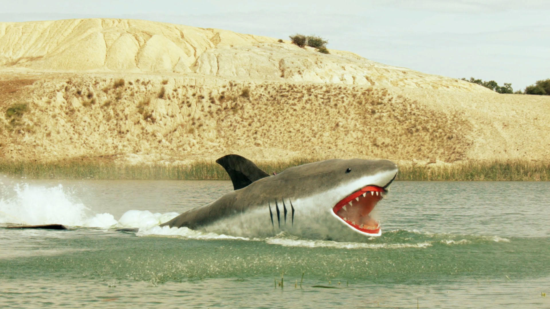 MythBusters: MythBusters: Jaws Special Full Episode | TV Guide