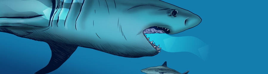 DO SHARKS NEED TO KEEP SWIMMING TO BREATHE?