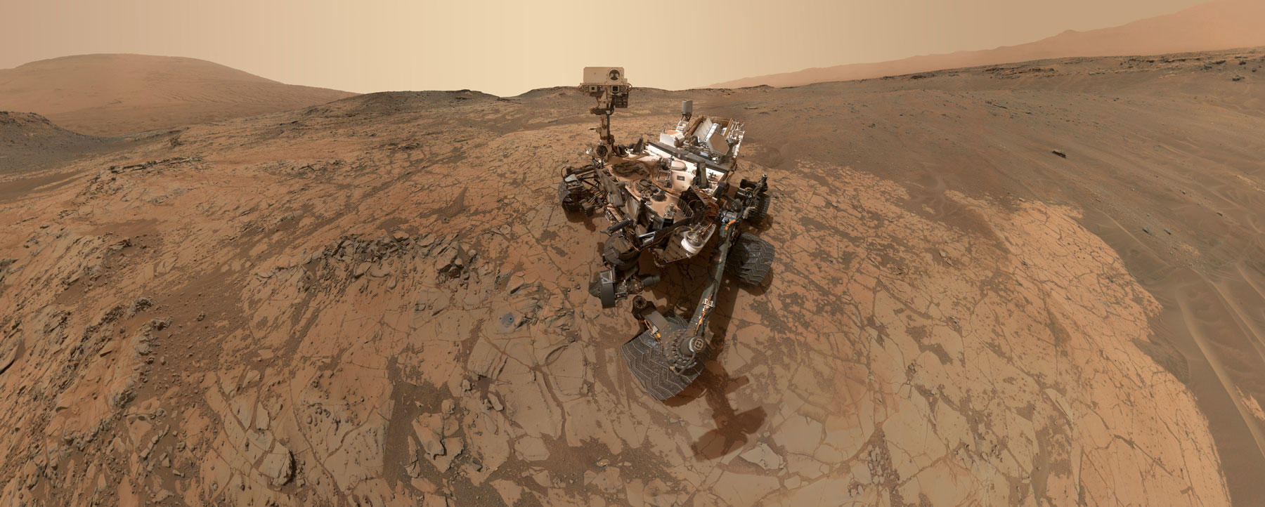 Curiosity's selfie