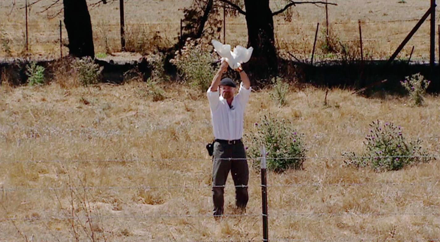 Quack Echo (2003)