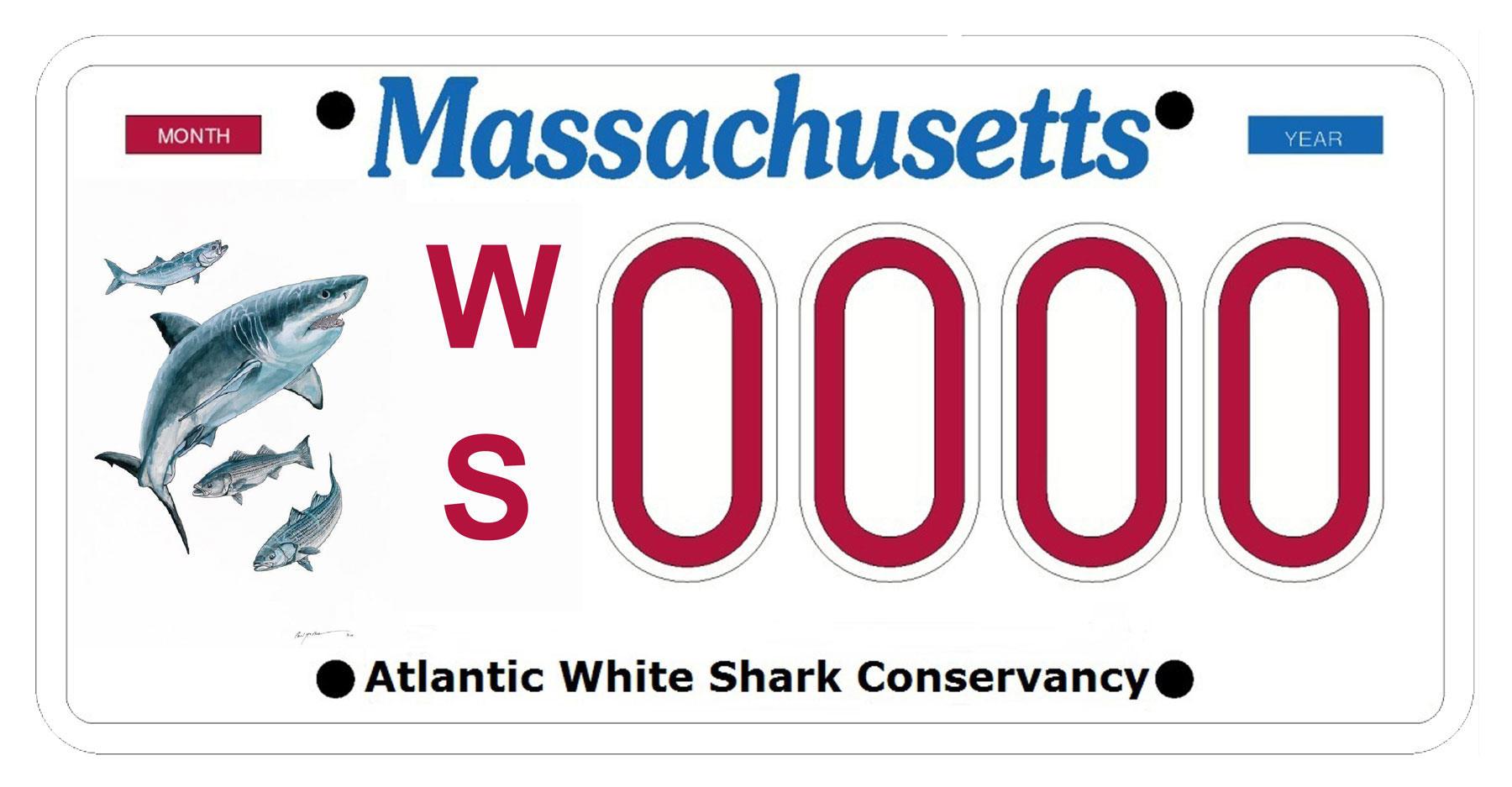 AWSC plate